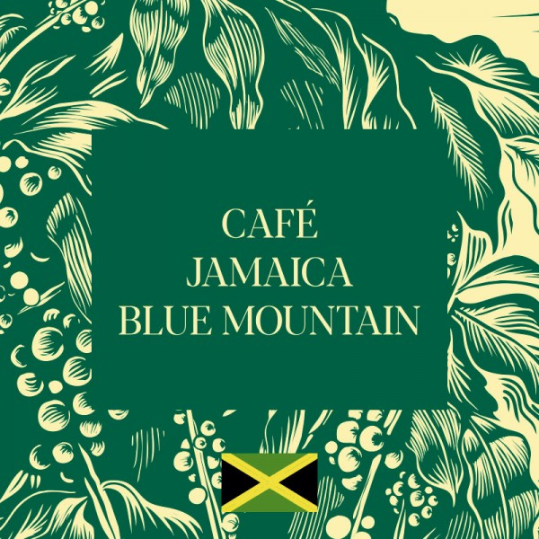 cafe blue montain